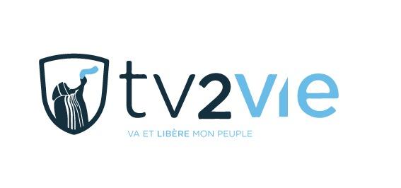 Logo tv2vie